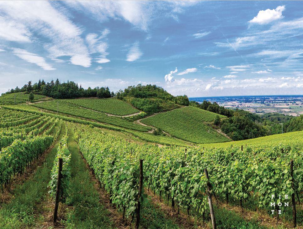 Piémont, Italie, région, vin, appellation, gastronomie